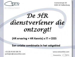 Cees HR consultancy